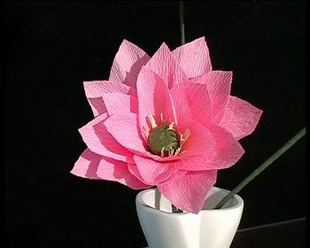简单纸花折法图解; 皱纹纸花的折法图解; · 纸花的制作