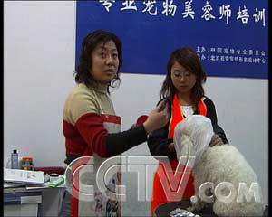 大鸡吧操骚逼_央视国际 (2005年04月27日 16:24)